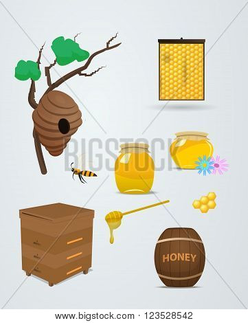 Barrels and bank of honey in vector set for apiary. The bee flies with a spoonful of honey in the hive. Branch with a beehive, honeycomb and honey in vector illustration.