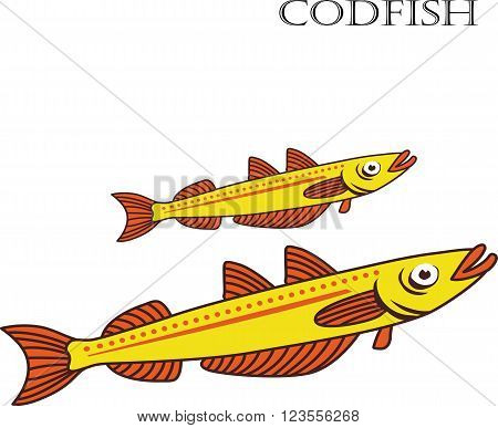Codfish color cartoon vector illustration. Codfishes on white background. Codfish vector. Codfish illustration. Codfish isolated vector.