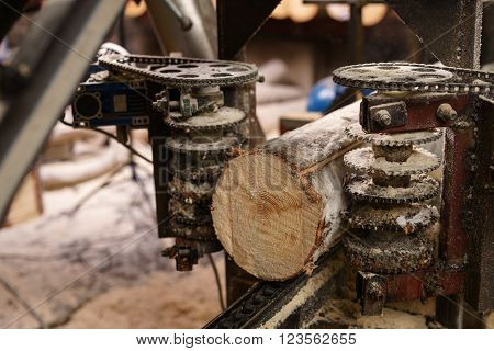 Image of machine for sawing wood at sawmill, close-up