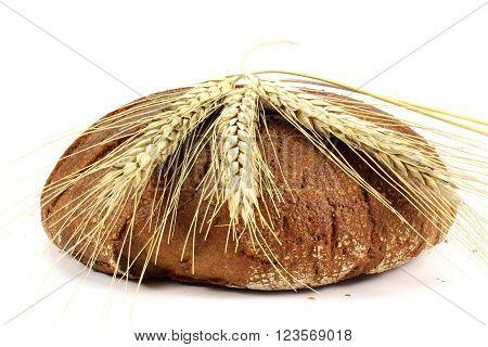 Dried ears of rye on rye bread