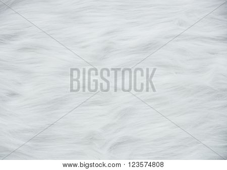 Closeup white wool sweater texture for background.