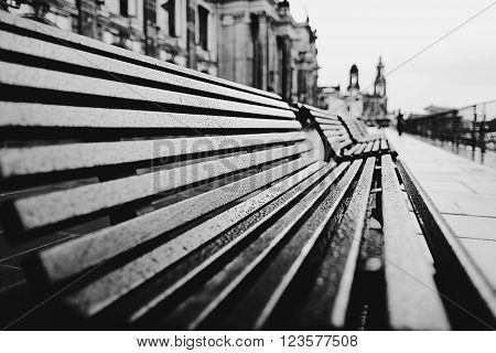 Empty benches in a rainy summer day Dresden Germany