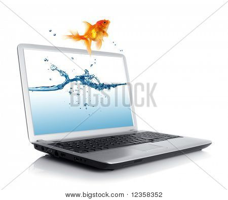 Goldfische springen aus dem monitor