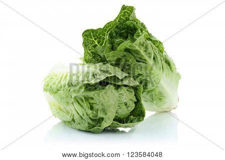Romaine Lettuce Vegetable Isolated