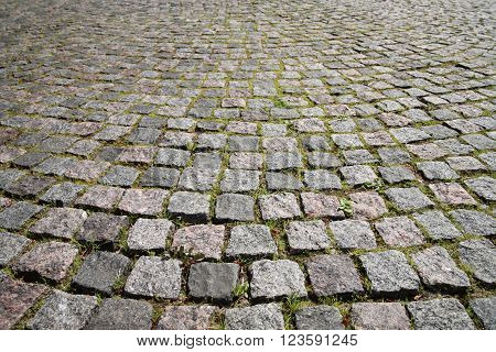 Pavement. Gray paving stones near the grass between them