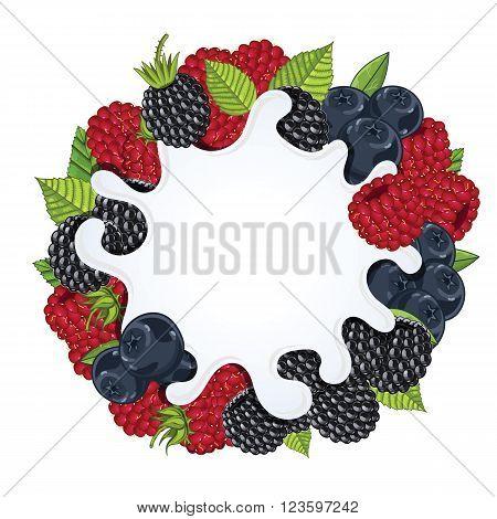 Yogurt splash isolated on wild berries. Milk splash. Wild berries yogurt. Yogurt Packaging Design Template. Vector illustration.