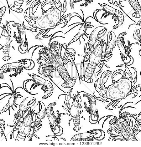 Graphic crustaceans collection drawn in line art style. Sea and ocean creatures isolated on white background. Coloring book page design