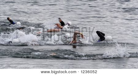 Triathlon Swimmers