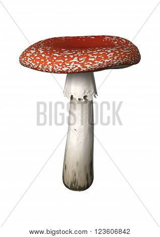 3D Illustration Fly Agaric On White