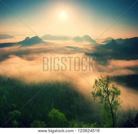 Marvolous Red Daybreak. Misty Daybreak In A Beautiful Hills. Peaks Of Hills Are Sticking Out From Fo