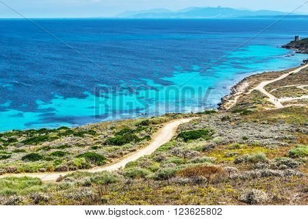 blue sea on a clear day in Sardinia Italy