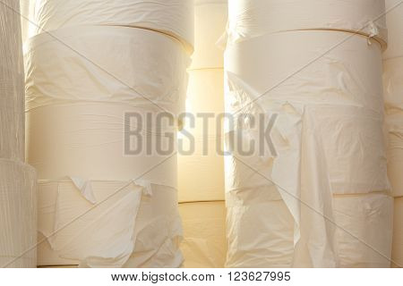 Toilet Paper Rolls In Closeup