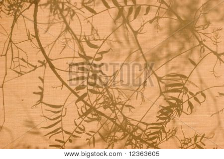 Foliage shadows on brown sunshade at sunny summer day