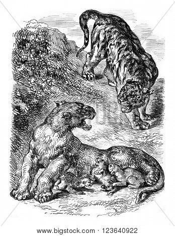 Mr. Eugene Delacroix drawing, vintage engraved illustration. Magasin Pittoresque 1853.