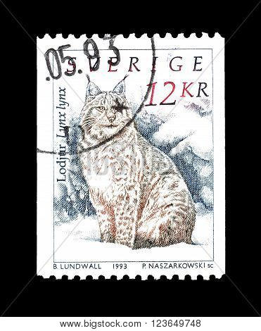 SWEDEN - CIRCA 1993 : Cancelled postage stamp printed by Sweden, that shows Lynx.