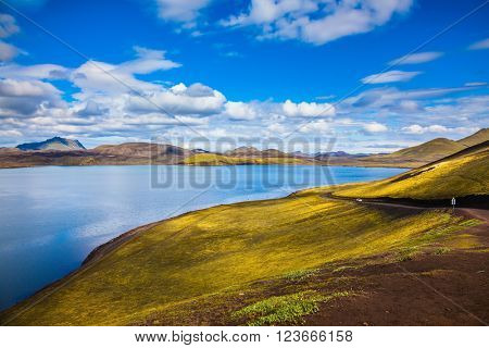 The magic of summer in Iceland. Cool blue water of the lake among the yellow tundra