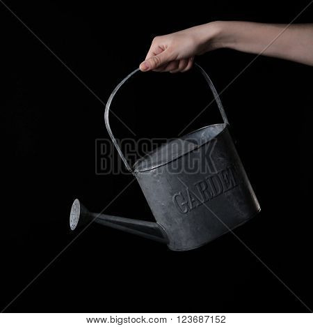 Female hand holding metal watering can on black background