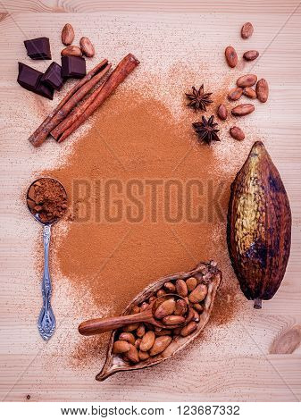 Brown Chocolate Powder In Spoon , Roasted Cocoa Beans In The Dry Cocoa Pod Fruit And Dark Chocolate