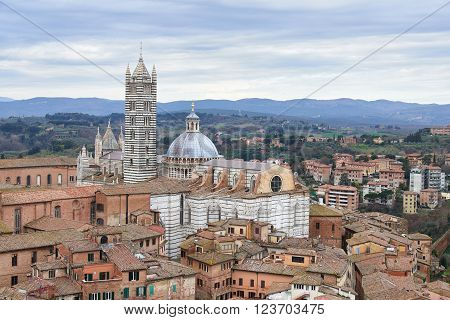Siena Cathedral (duomo Di Siena)