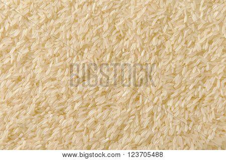 Full  frame of grains of uncooked white jasmine rice