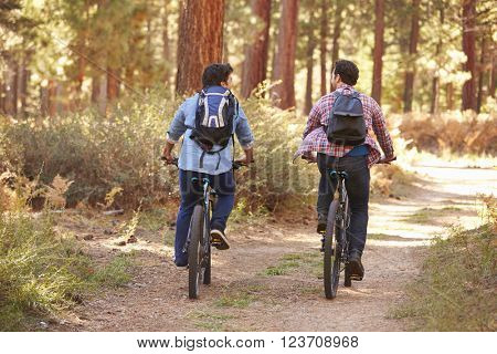 Gay Male Couple Cycling Through Fall Woodland