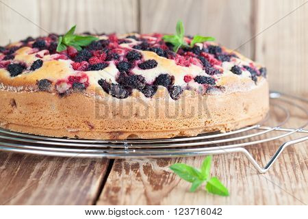 Mulberry and red currant cake. Shallow dof
