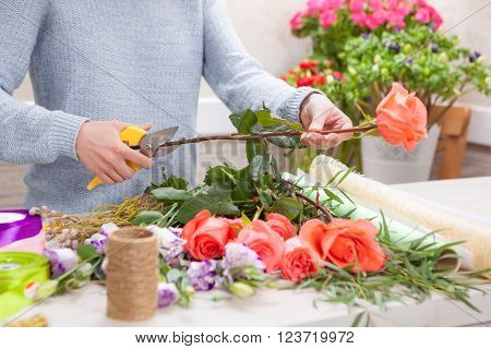 Florist at work. Female hands pruning rose in flowers shop.