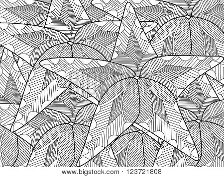 Starfish coloring book for adults vector illustration. Anti-stress coloring for adult. Zentangle style. Black and white lines. Lace pattern