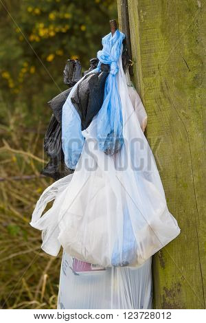 several plastic bags of rubbish hung on a wooden fence post