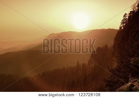 Dreamy Fogy Landscape, Gentle Orange Misty Sunrise