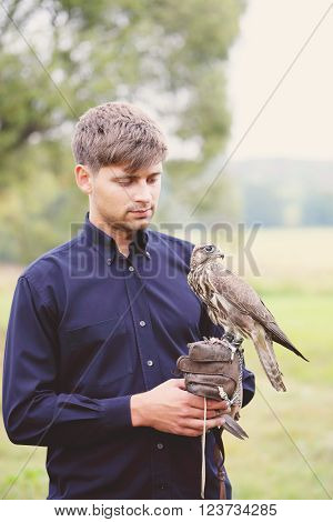 The owner feeds his falcon dove meat