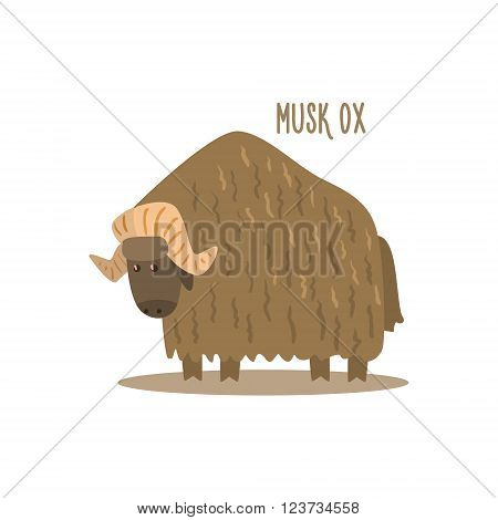 Musk Ox Drawing For Arctic Animals Collection Of Flat Vector Illustration In Creative Style On White Background