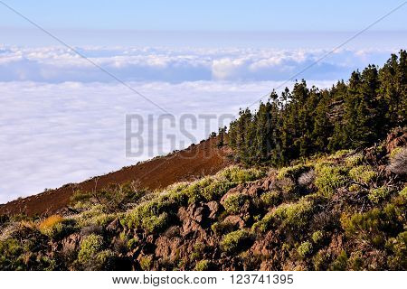 Mar de Nubes, Sea Cloud on the High Mountains Phenomenon in Tenerife, Canary Island