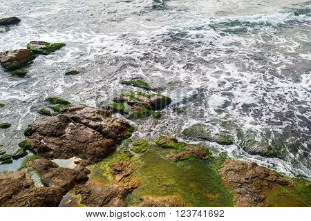 Close-up of sea surf. Shore with sea water and large rocks covered with algae. Rocky coastline with sea water and boulders.
