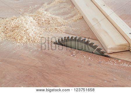 Circular saw cutting wooden plank. (focus Circular saw)
