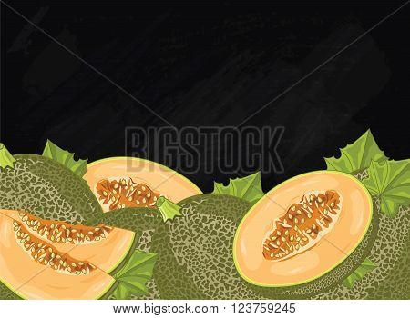 Melon on chalkboard background. Melon composition, plants and leaves. Organic food. Summer fruit. Fruit background for packaging design.