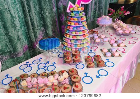 Candy bar on gender reveal party delicious cakes bouquets of tulips in a vase. Dessert table on wedding or party. Closeup assortment of lots of multicolored tasty sweets dessert.