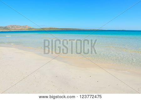 turquoise sea in Stintino shoreline in Sardinia