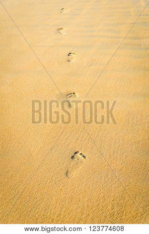 Footprints on the sand beach. Selective focus