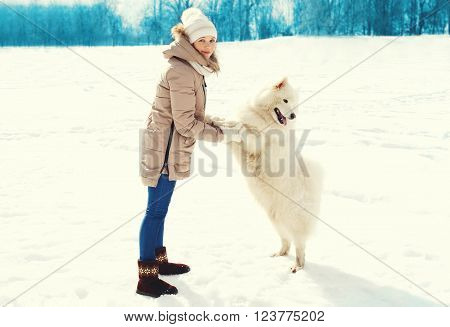 Woman Owner And White Samoyed Dog Walking In Winter Park