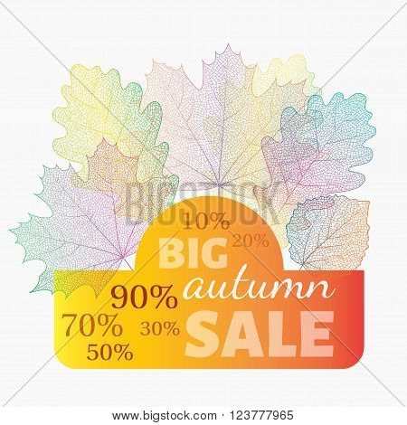 Autumn sale banner with discount. Vector skeleton fall leaves on background. Can be used for flyers, banners, posters, cards etc. Vector illustration.