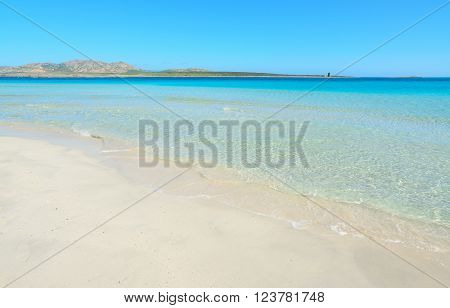 crystal clear water in Stintino shoreline, Sardinia