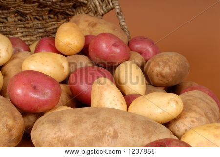 Closeup Of Russet, Red And White Potatoes Spilling Out Of A Bask