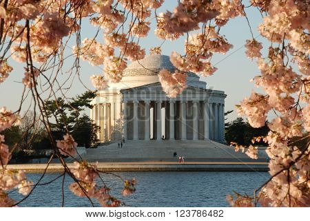 The Jefferson Memorial in Spring in Washington D.C.