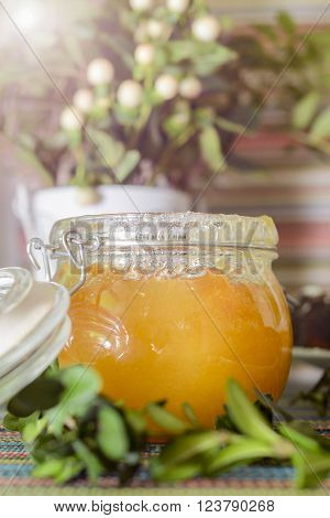 Honey in glass jar on colorful tablecloth against sun. green twig