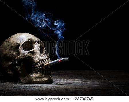 Still life skull and cigarette people smoke cigarette and get toxin body look like way to die. In the day