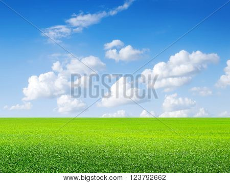 Green field, blue sky and white clouds.