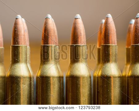 several rows of rifle bullets standing upright