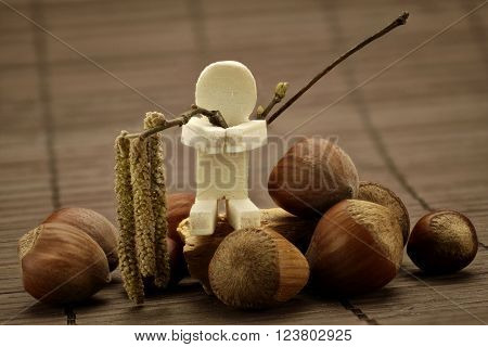 Hazelnuts with hazelnut flower and a wooden figure