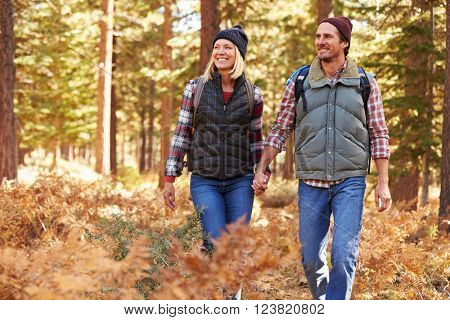 Couple holding hands walking in a forest, California, USA